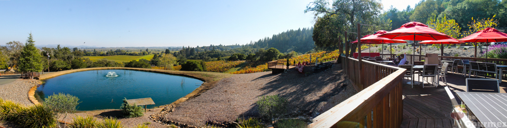 wine road, sonoma county, armida, armida winery, wine travel, pond