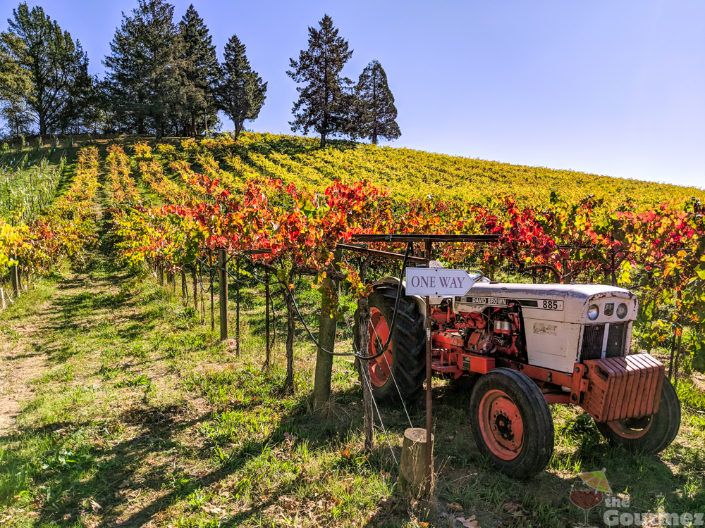 wine road, sonoma county, acorn winery, fall, autumn colors, tractor, grapevines