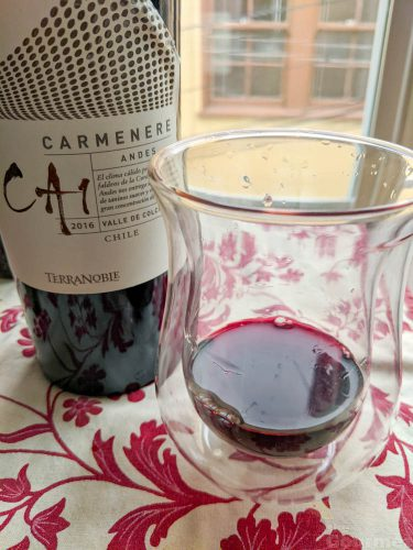 terranoble, terranoble wine, carmenere, wine tasting, tasting notes, wine review, chilean wine, chile wine, the gourmez, ca1, andes