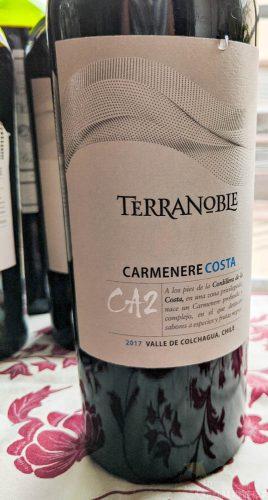 terranoble, terranoble wine, carmenere, wine tasting, tasting notes, wine review, chilean wine, chile wine, the gourmez, CA2, costa