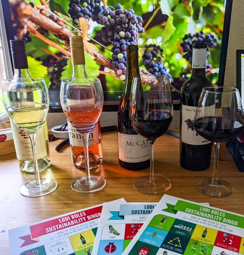 lodi wine, lodi winegrape commission, lodi rules, wine tasting, the gourmez, sustainability